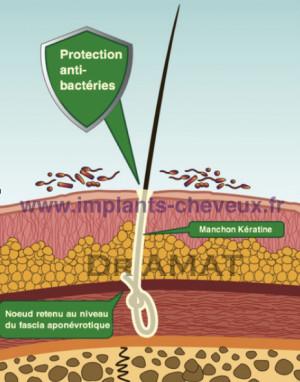 Biofibres